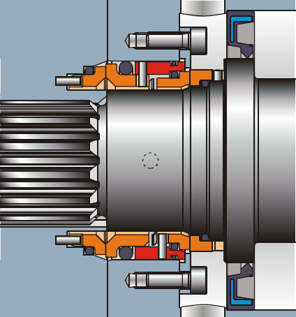 Double Mechanical Seal for Lobe Pump
